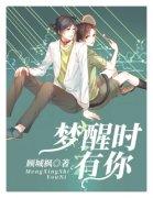主角是許城顧北冥的小說 夢醒時有你最新章結局在線閱讀