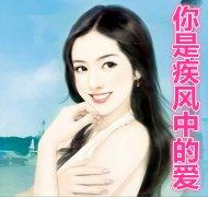你是疾风中的爱小说 主角是沈叶秦潇的小说