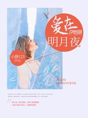 小琳鴻斌小说 爱在明月夜小说完整版