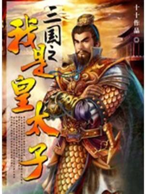 三国之我是皇太子全集阅读 主角是刘冯的小说
