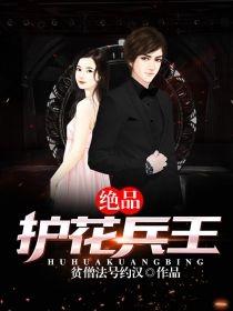 主角是趙兵趙雅琪的小說 名字叫做絕品護花兵王