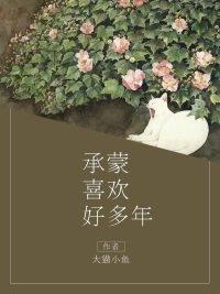乔念顾沈凉小说名字 承蒙喜欢好多年未删减阅读