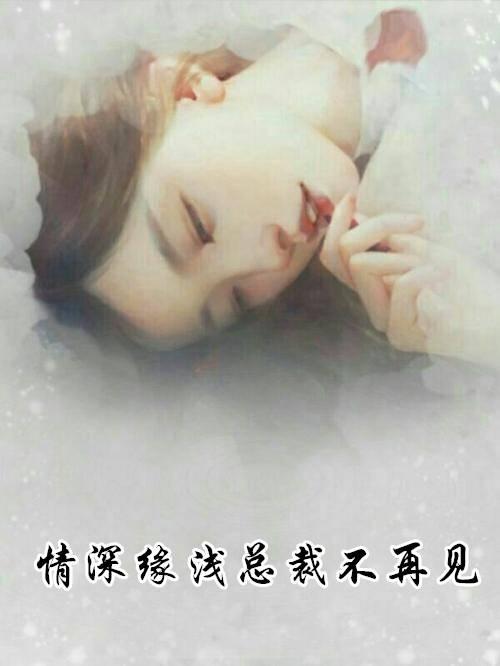 宋乔霍廷琛小说 情深缘浅总裁不再见 无删减阅读