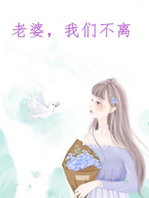 老婆我们不离(一白)小说 林语华明灏全文无删减阅读
