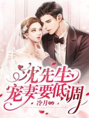 俞夏沈闻小说 沈先生宠妻要低调在线阅读