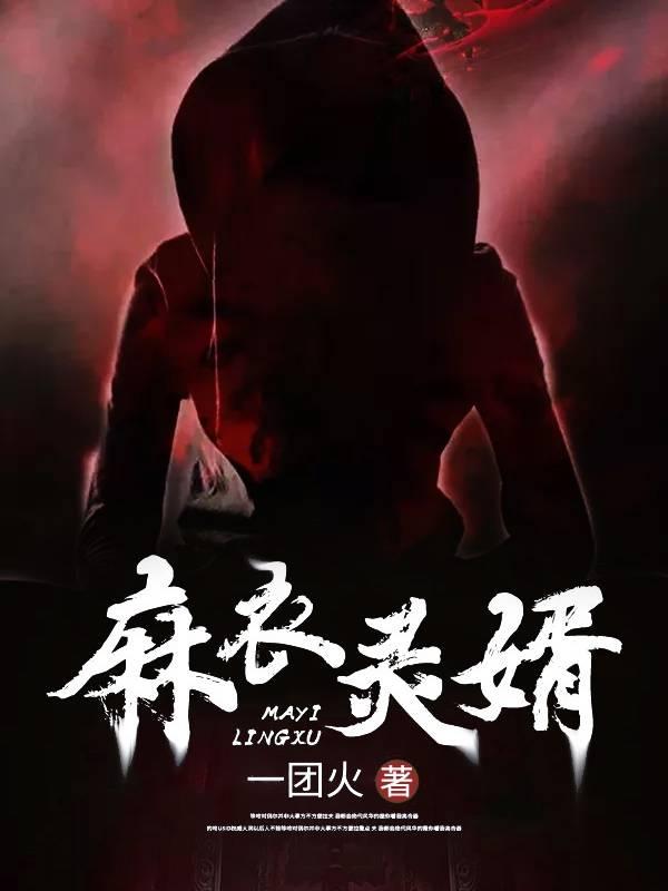 (免费阅读在线全文)主角麻衣灵婿刘清苏离名字小说